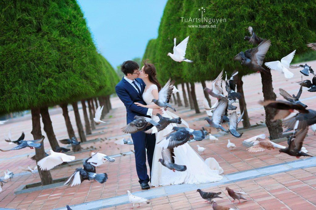 album ảnh cưới cập nhật 2015 11