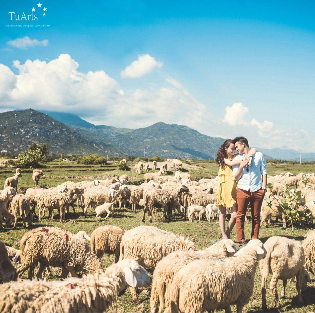 Kinh nghiệm chụp ảnh cưới đẹp ở Nha Trang 7