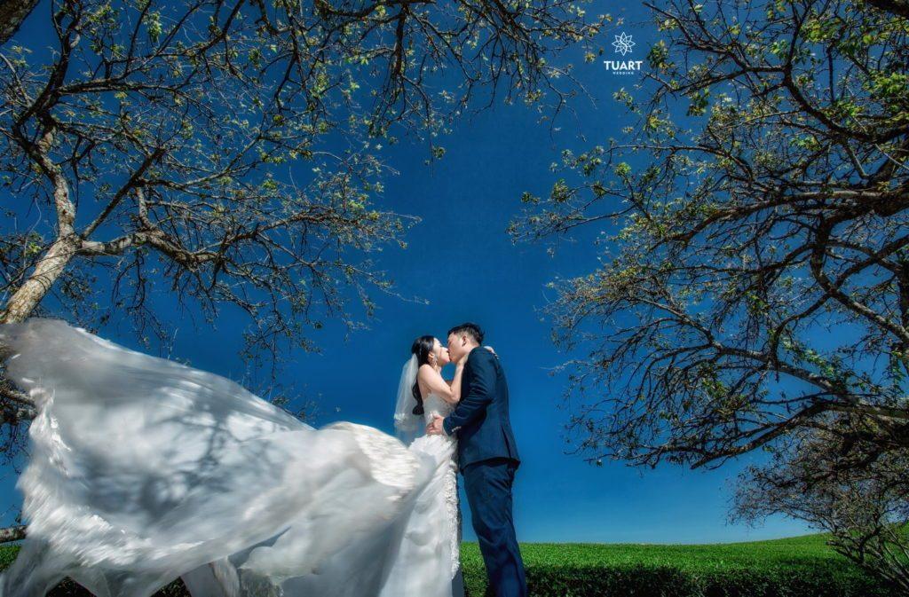 Album ảnh cưới Mộc Châu: Đức - Lan 31