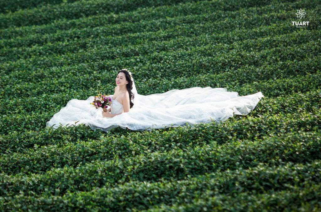 Album ảnh cưới Mộc Châu: Đức - Lan 14