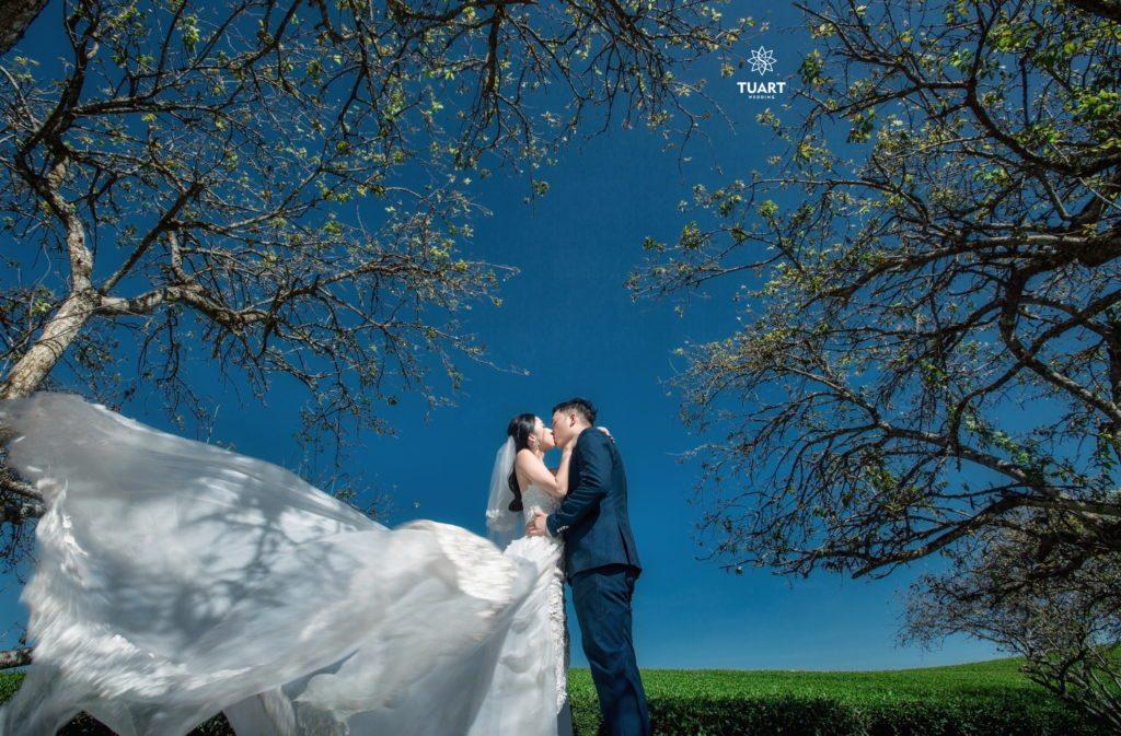 Chụp ảnh cưới TuArts Nguyen Studio (P2) 1