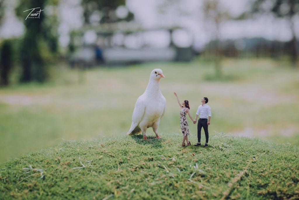 Album ảnh cưới Đẹp – Độc – Lạ: Trung – Tiên