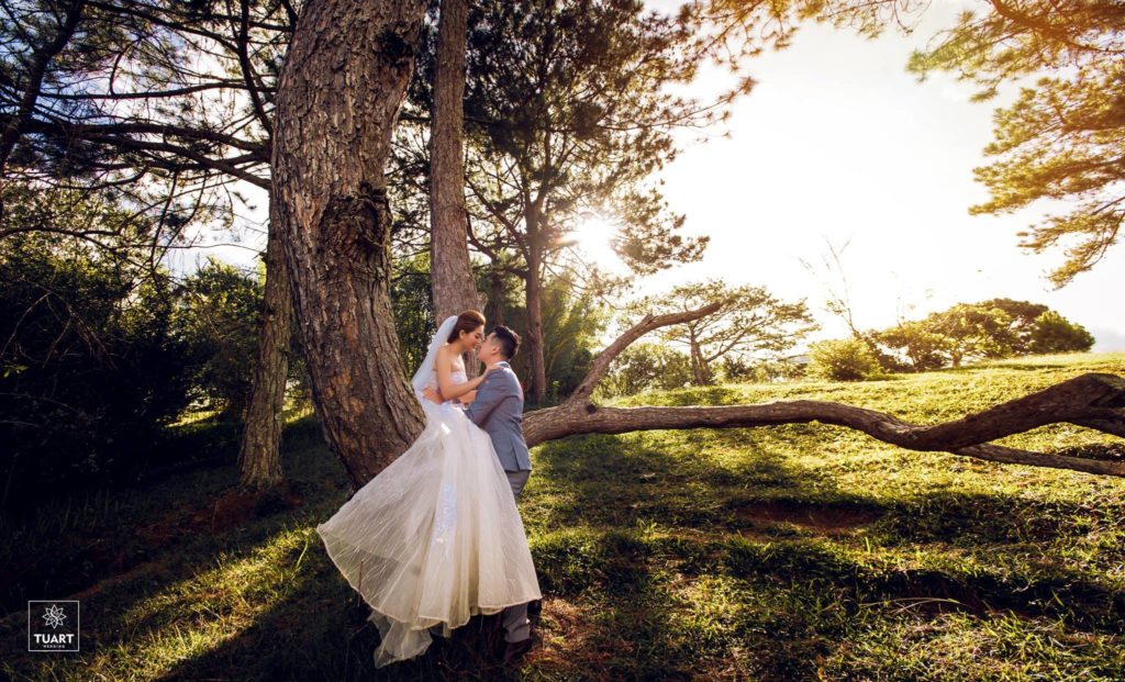 Album tại Đà Lạt – Album chụp hình cưới đẹp