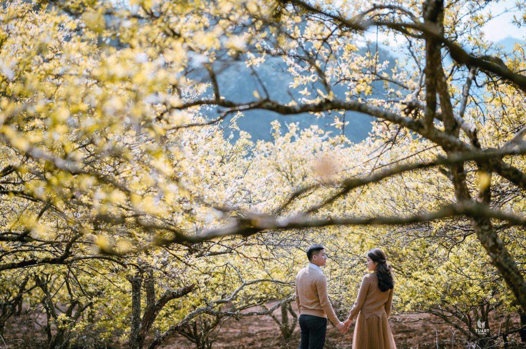 Album tại Mộc Châu – Album chụp ảnh cưới Hành trình Tình Yêu