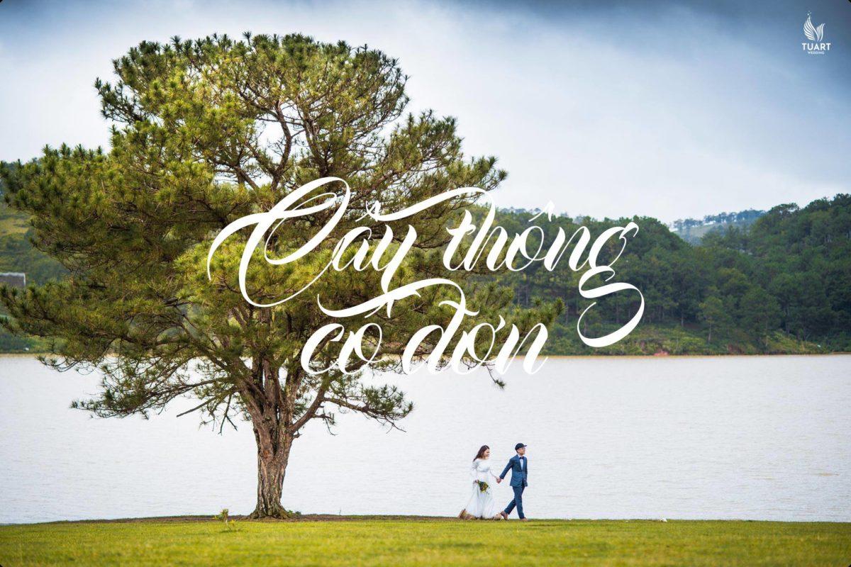 Tour chụp ảnh cưới mùa đẹp nhất trong năm tại Đà Lạt