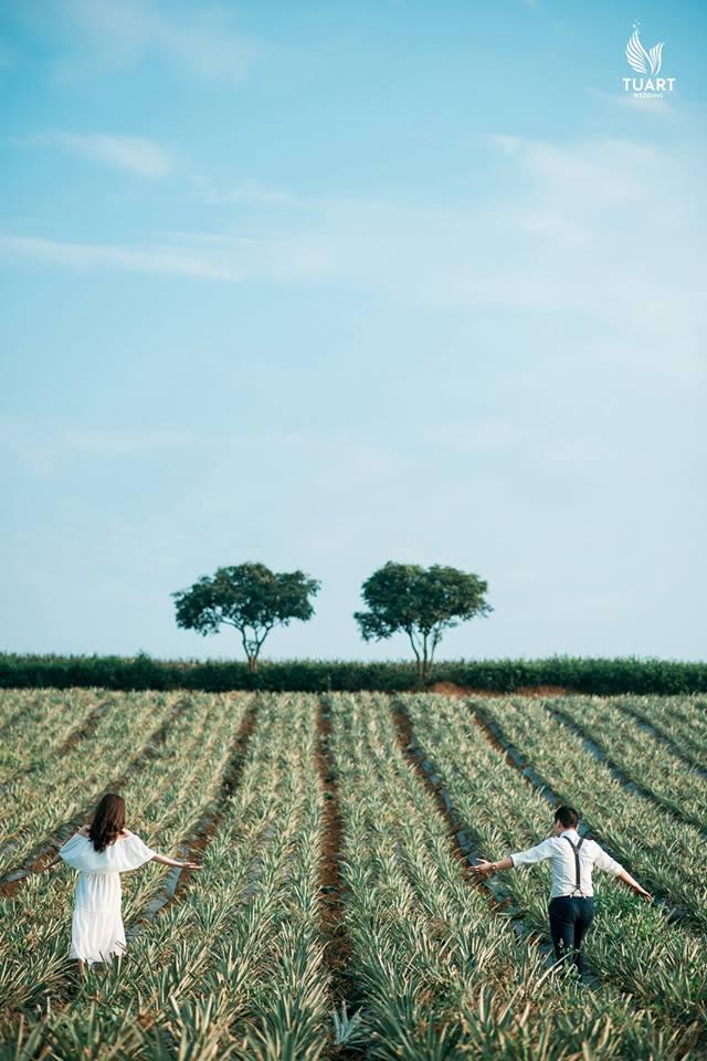 Album chụp ảnh cưới đẹp tại Ninh Bình : Hoàng-Trang 6