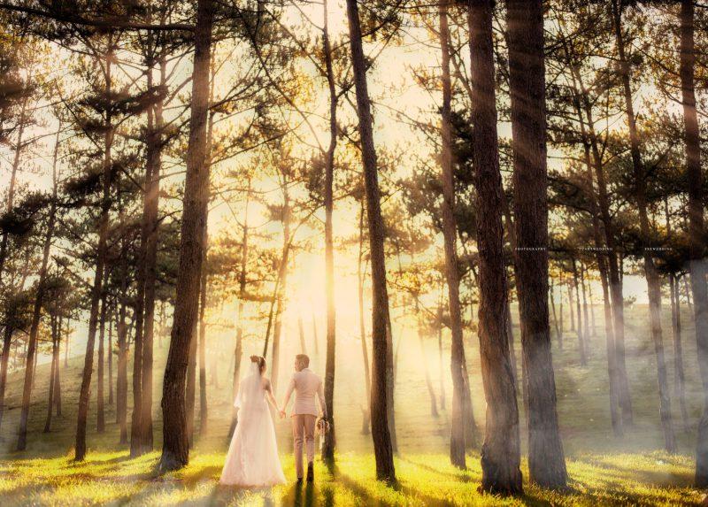 chụp ảnh cưới thanh hóa